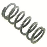 BT4 (66) Internal Valve Spring