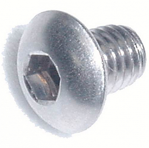 BT4 (39) Valve Screw